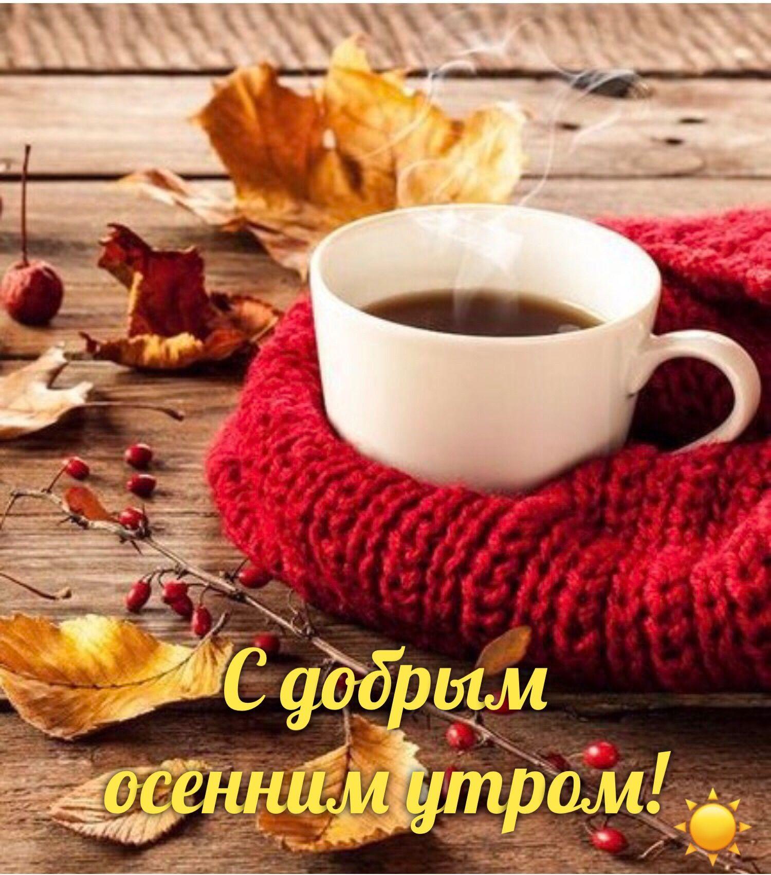 Доброе утро моя любимая картинки с осенью, открытки