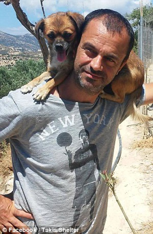 This Amazing Man Has Rescued Over 200 Dogs Abandoned in the