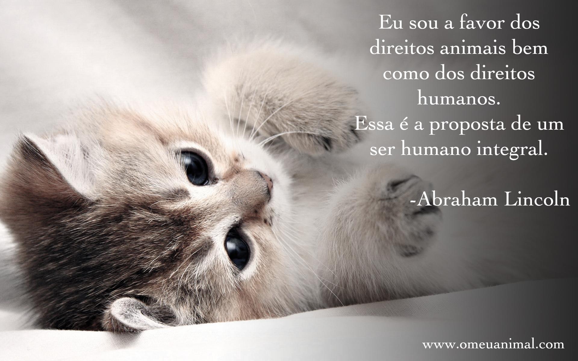 Frases Com Animais De Estimação Para Facebook: Frases De Animais + Frases Sobre Animais+ Frases Animais