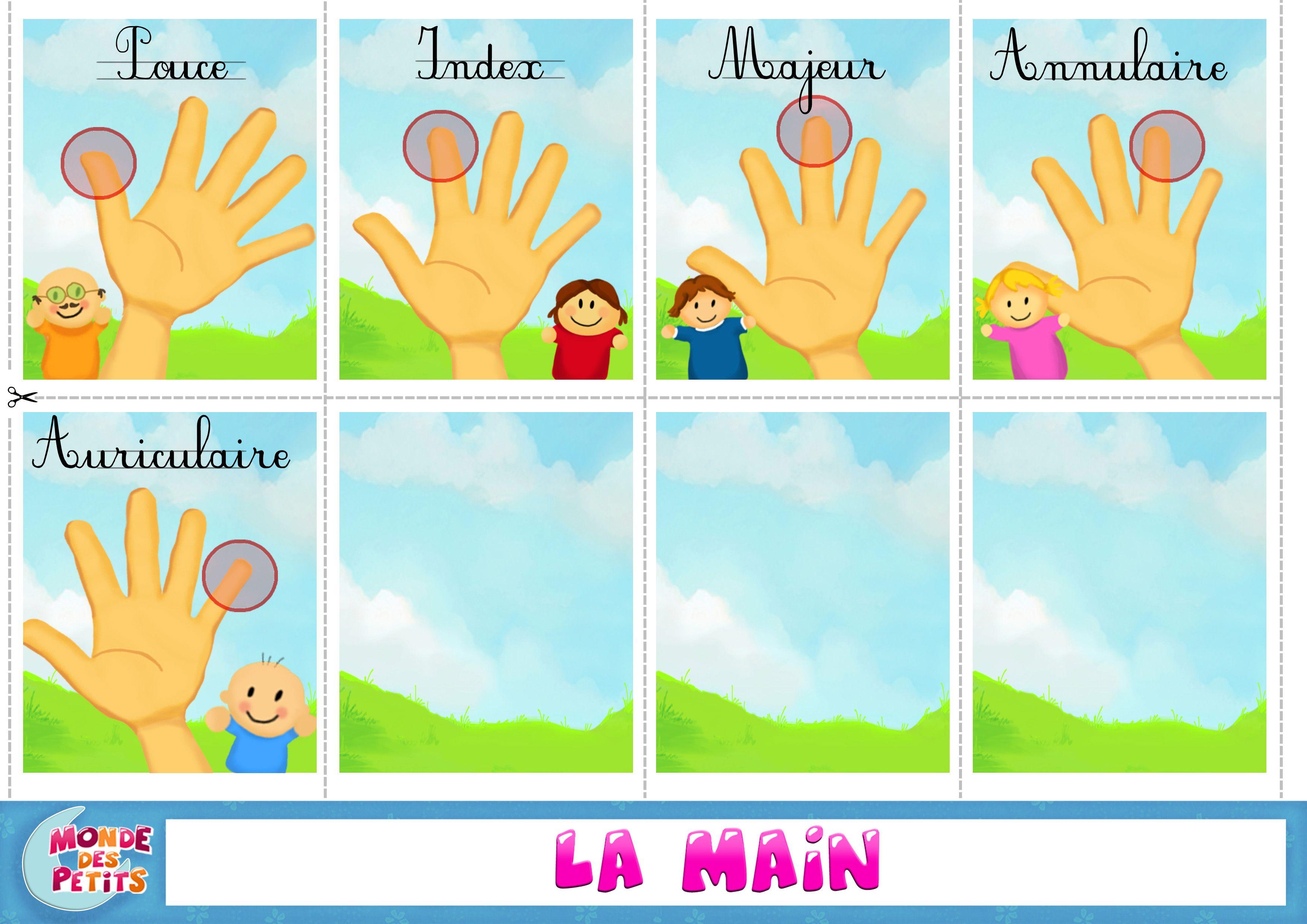 cartes  u00e0 imprimer les doigts de la main