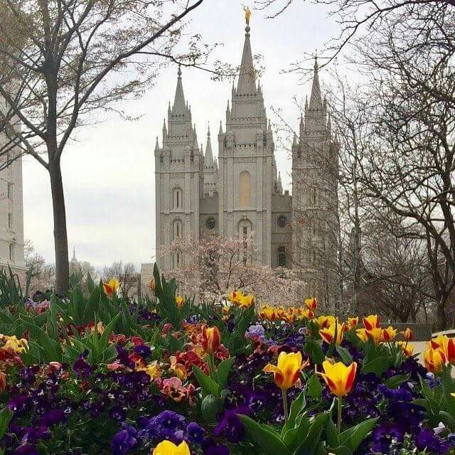 Salt Lake City Spring: Salt Lake City Temple. Spring 2017