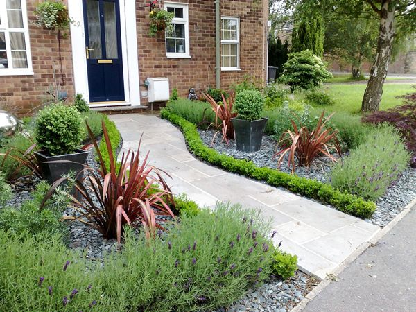 like the mini boxwoods and something taller behind them to line the ...