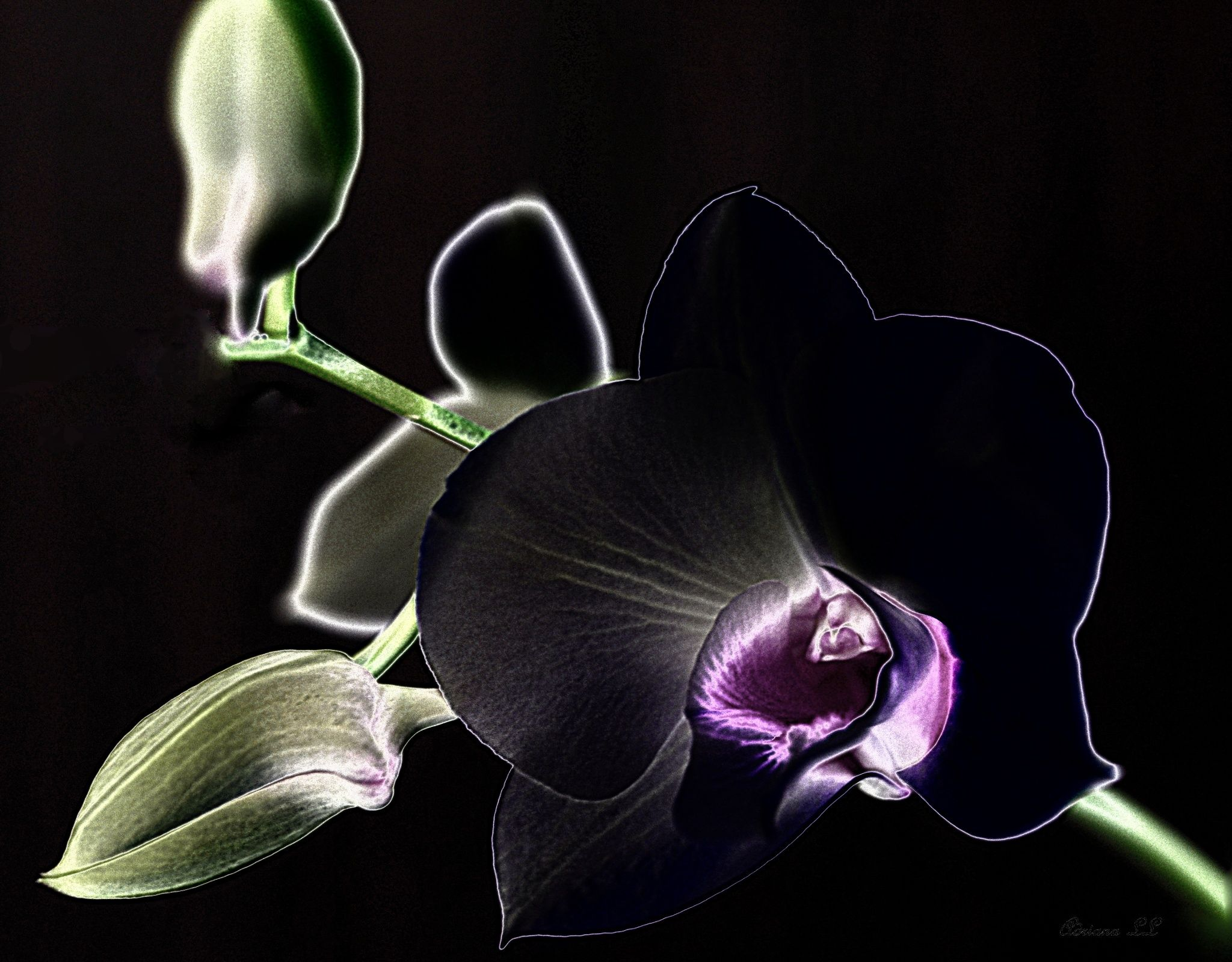 Light in dark by adriana ludwig loebel on px photos that i love