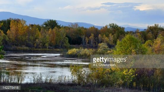 142275418-pond-surrounding-with-autumn-trees-gettyimages.jpg (552×311)