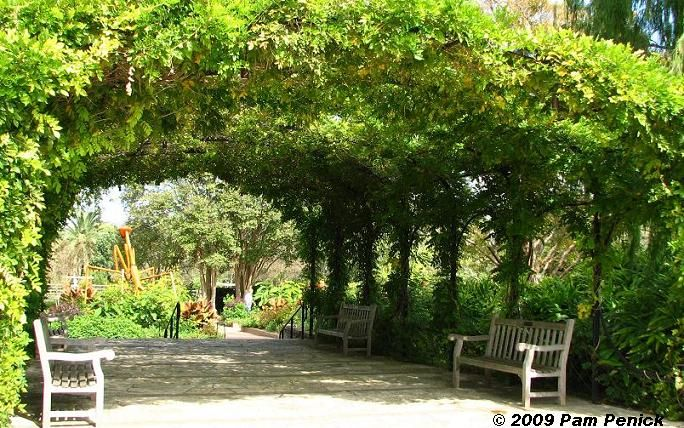 Blogger Field Trip San Antonio Botanical Garden Digging Landscape Pinterest Wisteria