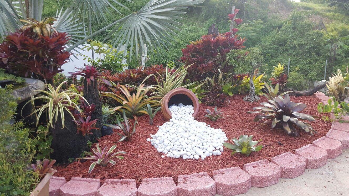 hermosas ideas de paisajismo en el patio trasero Bromelias Las Suculentas Terrarios Maceteros De Jardn