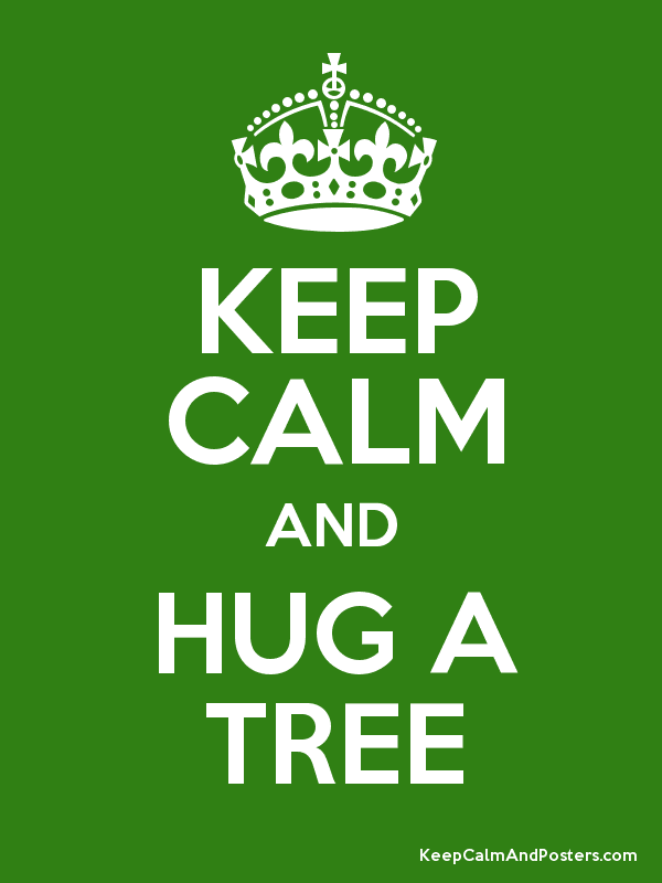 keep calm, hug, hug a tree, tree