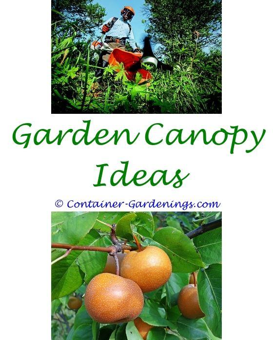 Gardening News Uk   Small japanese garden, Garden ideas and Gardens