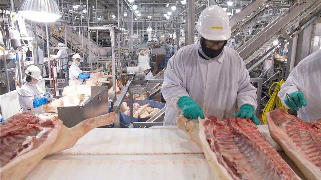 In one month, the meat industry's supply chain broke. Here