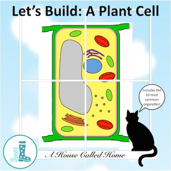 Let's Build A Plant Cell Plant cell, Cells activity