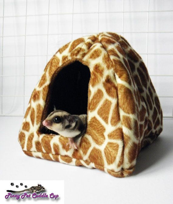 Cool tent toys | Sugar glider cage, Sugar glider, Sugar