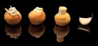 Mini bola de pan frita (3 cm. 10 gr). Perfecta para rellenar con lo que quieras.