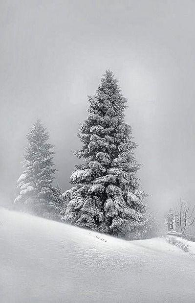 Pure White Snow – Nymfaio, Greece