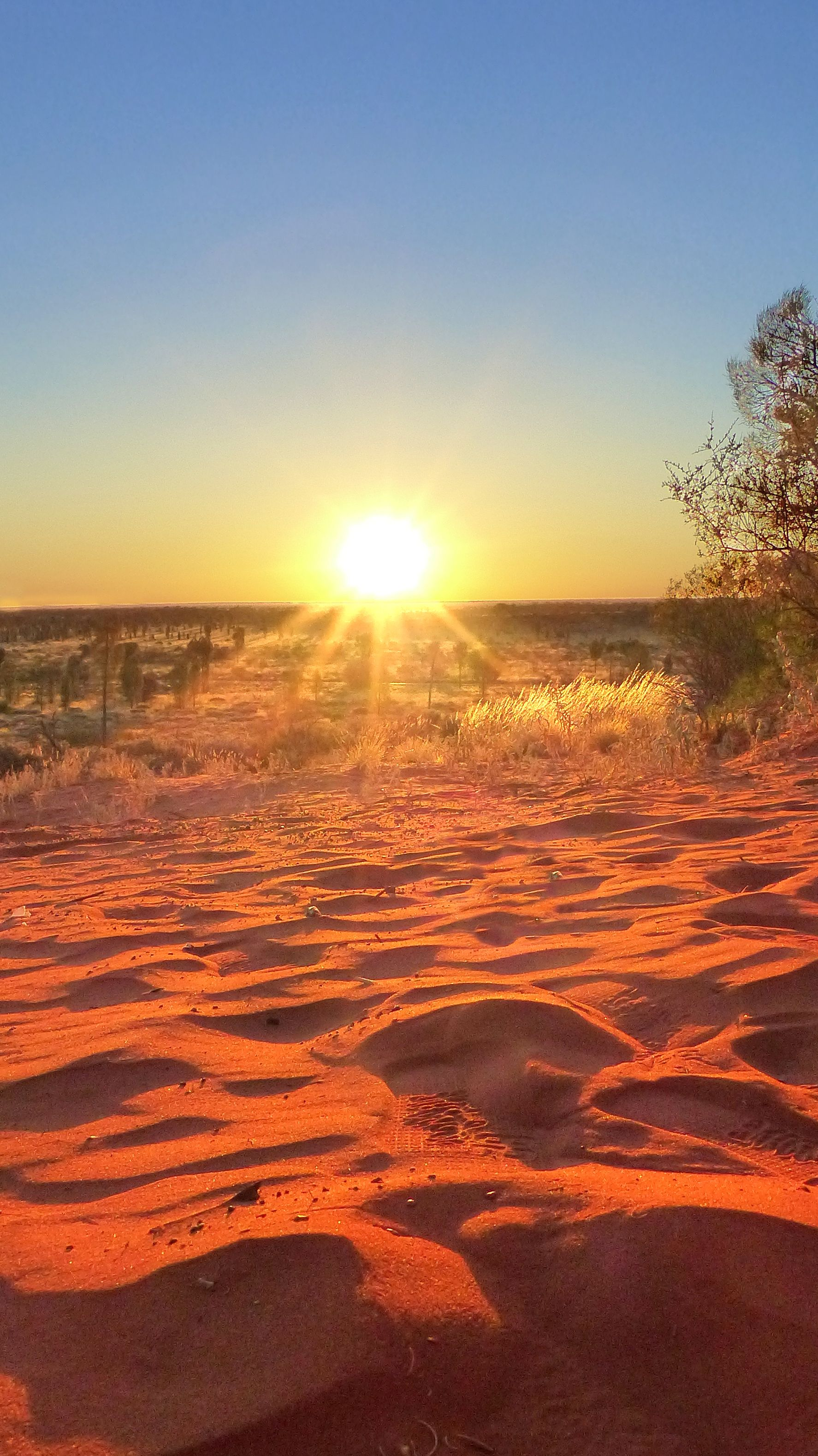 The Australian outback. If you go, you need to try out sleeping in a swag. Here's how to: http://travelonthebrain.net/going-camping-outback-heres-consider-2 | Travel on the Brain