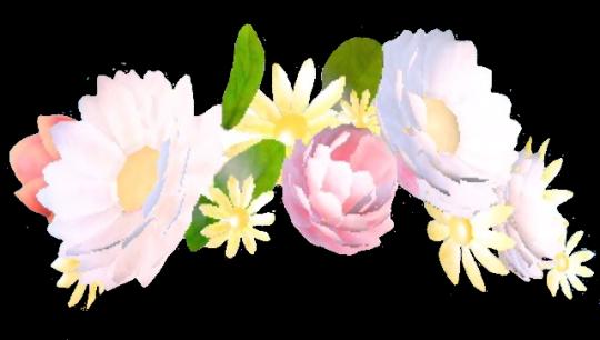 Transparents Snapchat flower crown filter, Snapchat