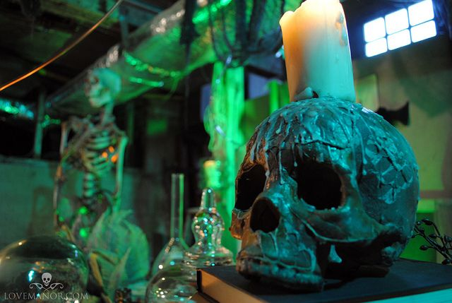 Curiosities in the Lab by Love Manor,