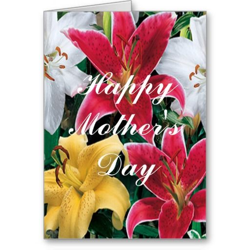 Colorful Flowers Greeting Card http://www.zazzle.com/colorful_flowers_greeting_card-137494221987040623?rf=238271513374472230  #mothersday