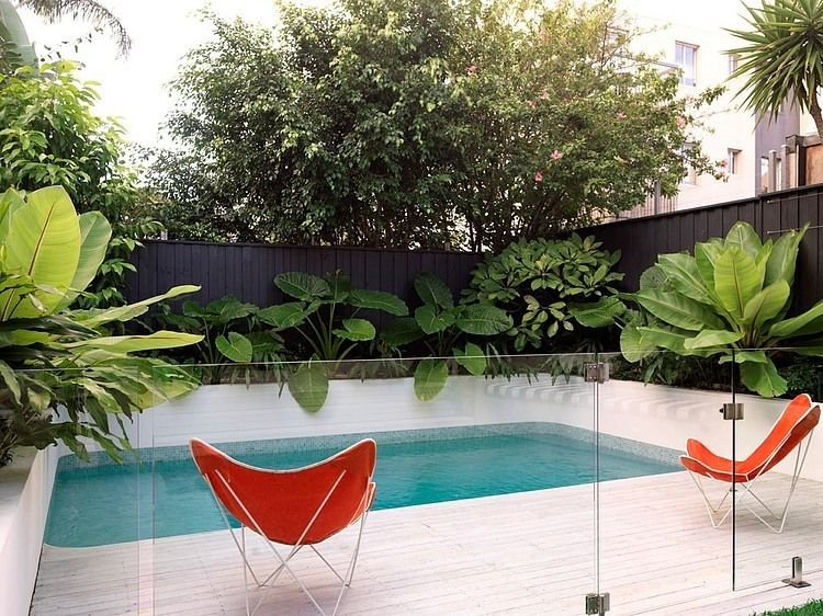 Plunge Pool + Great Tropical Planting   Pool Fence, Amazing, Glass Fence,  Black