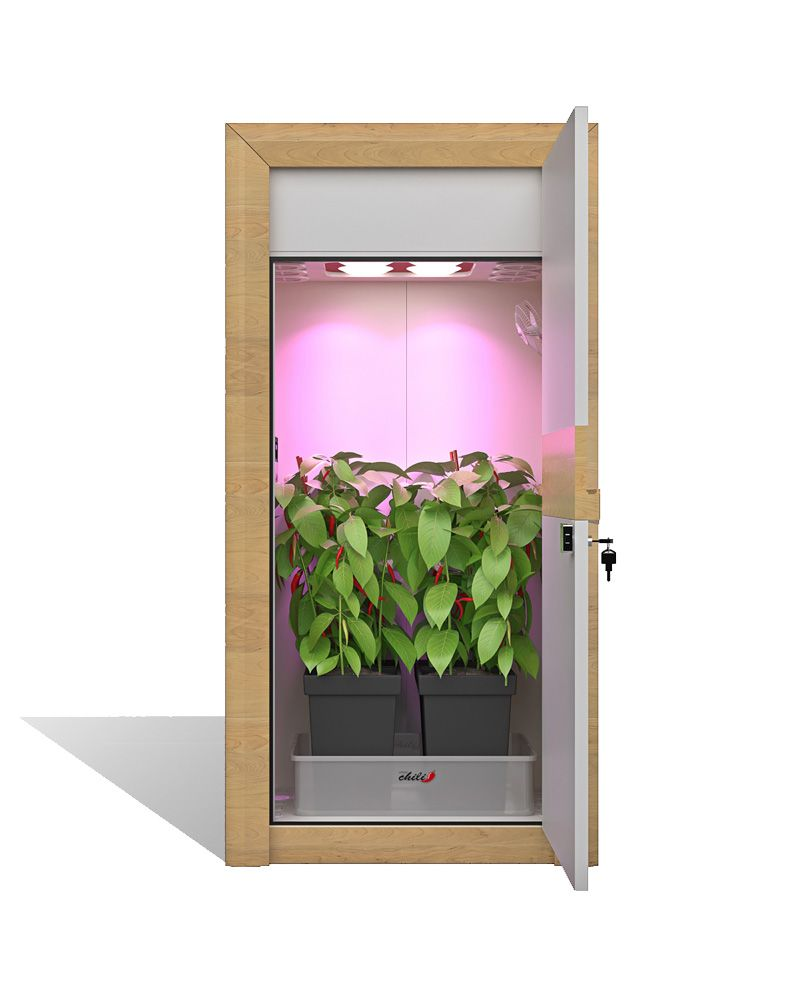 Urban Chili Growbox Komplettset Bausatz Nature Line Growschrank Set Sets Nature Line Chili
