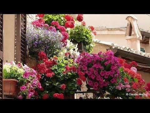 SPELLO Balconi, finestre e vicoli fioriti Full HD
