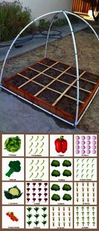 Gardening PlanSquare Foot Gardening Plan Easy Harvest Potato Planter Hübscher kool 9 Upcycled Seed Starters  Cucumber trellis and PVC watering system as well as othe...