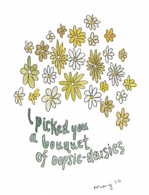 oopsie | daisies | Daisy quotes, Flower quotes, Daisy