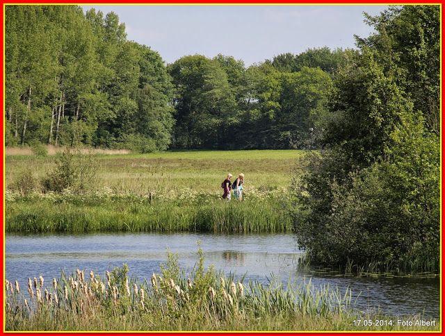 17-05-2014: Kuinre-Oldeberkoop; Dag1 Friese waterlinie 2-daagse - Albert Westra - Picasa Webalbums