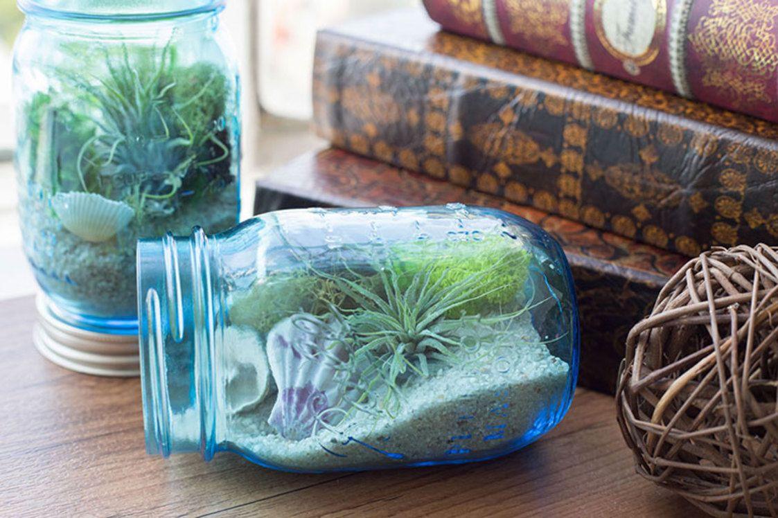Diy mason jar aquarium darby smart decor celebrations pinterest
