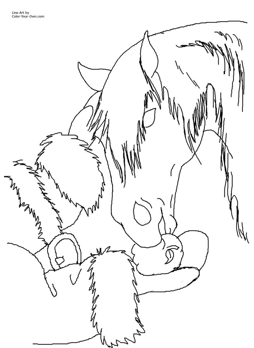 Holiday Horse Coloring Pages Christmas Colors