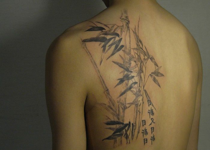 Japanese Bamboo Tattoo On Back Shoulder Bamboo Tattoo Symbols
