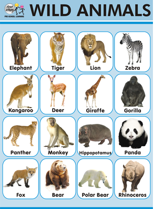Easy learning Animals Chart Wild Animals names. HowTo