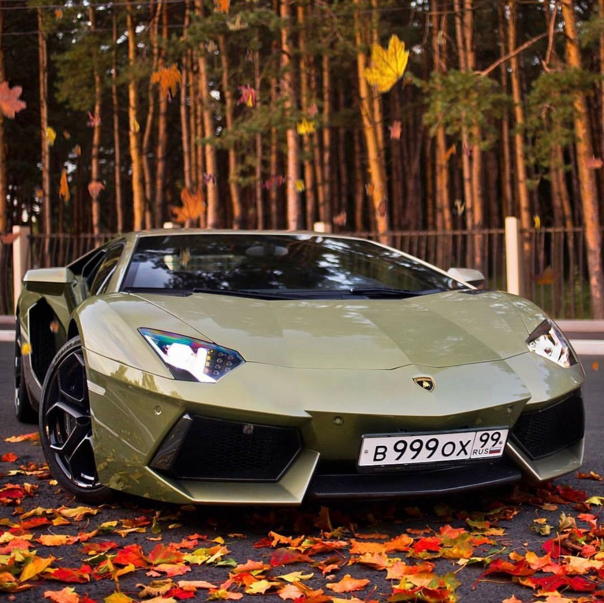 Lamborghini Aventador Painted In Verde Draco Photo Taken By