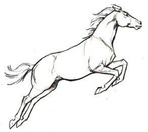 Cool Horse Jumping Coloring Pages 74 Horse jumping sketch
