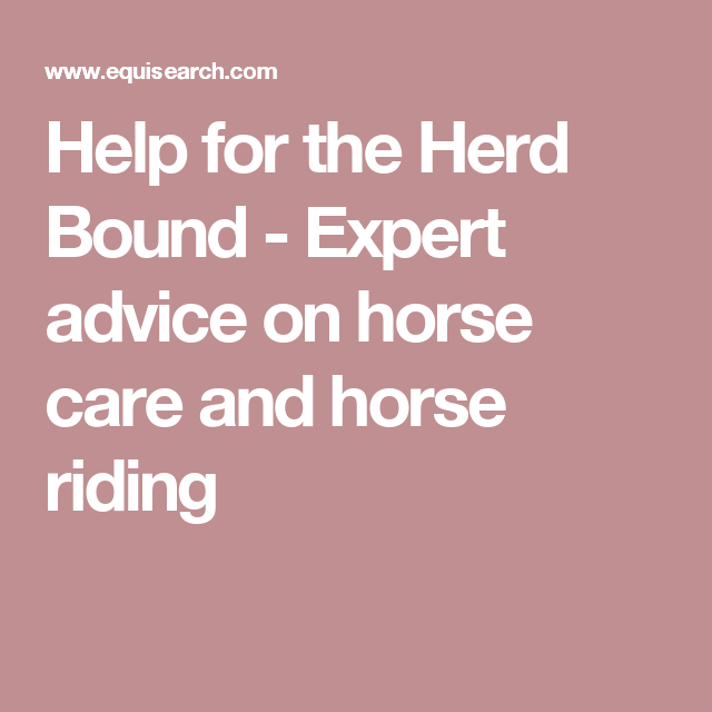 Help for the Herd Bound - Expert advice on horse care and horse riding