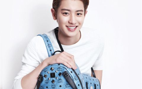 MCM x EXO Collaboration Micro Site - Luxury leather goods, Handbags and Accessories, EXO