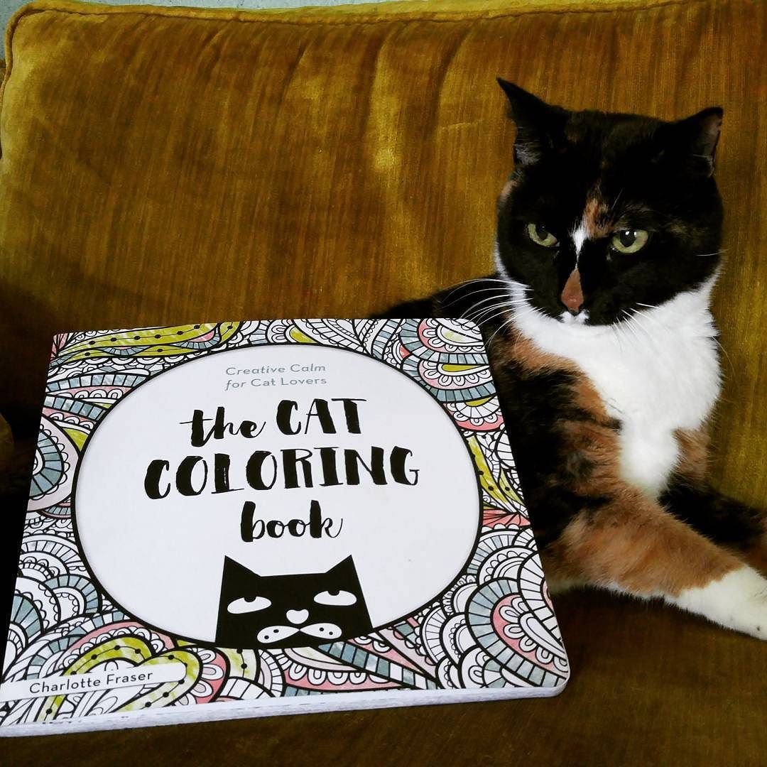 Meow this book is pawsome so many beautiful pages of cats to color