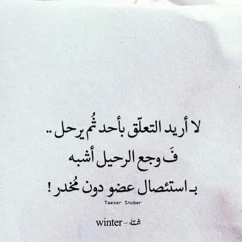 Google Wise Words Arabic Words Quotes