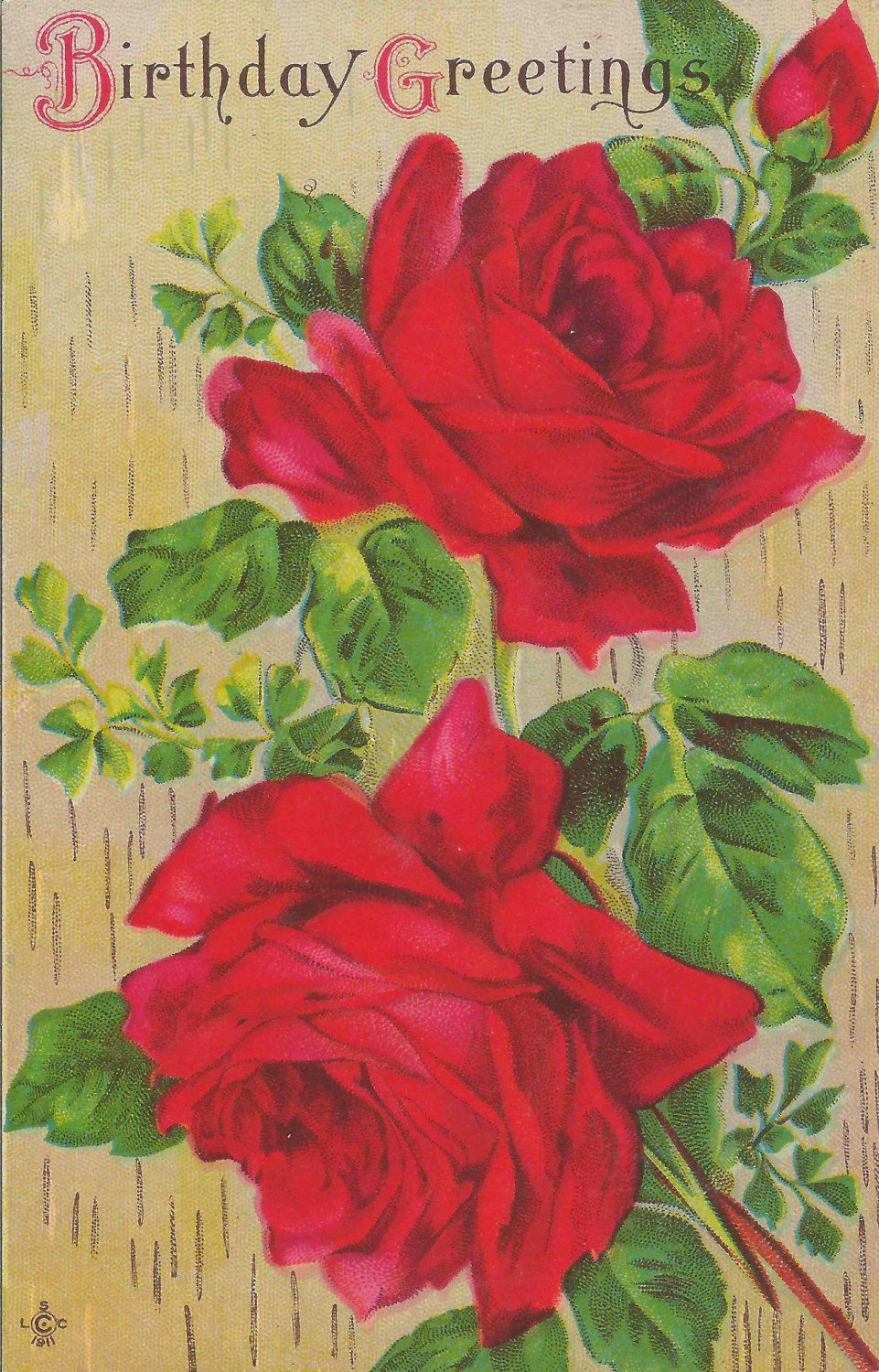 Antique Early 1900s Happy Birthday Postcard Featuring Beautiful Red