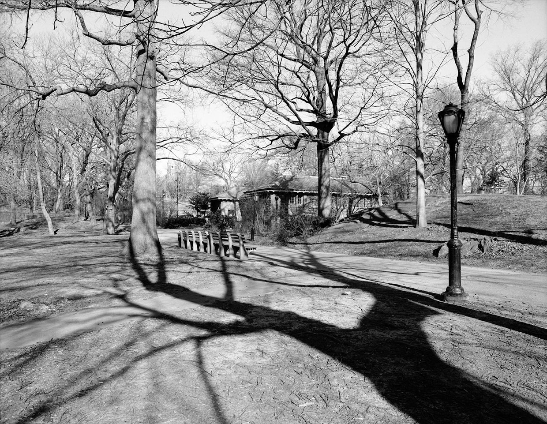 Central Park, New York by João Ribeiro