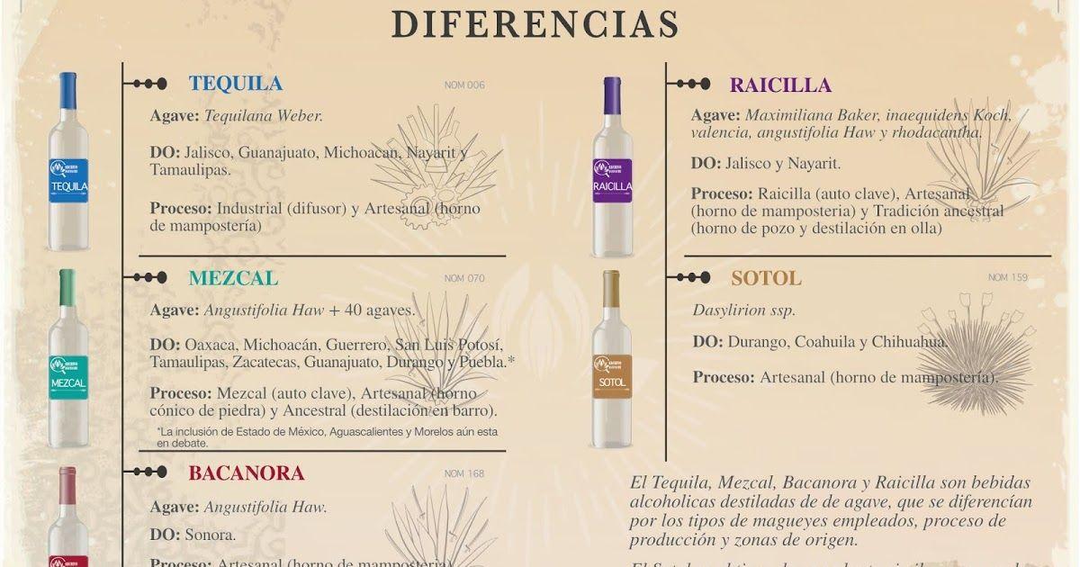 Diferencias Entre Tequila Mezcal Raicilla Bacanora Y Sotol Mezcal Tequila Destilacion