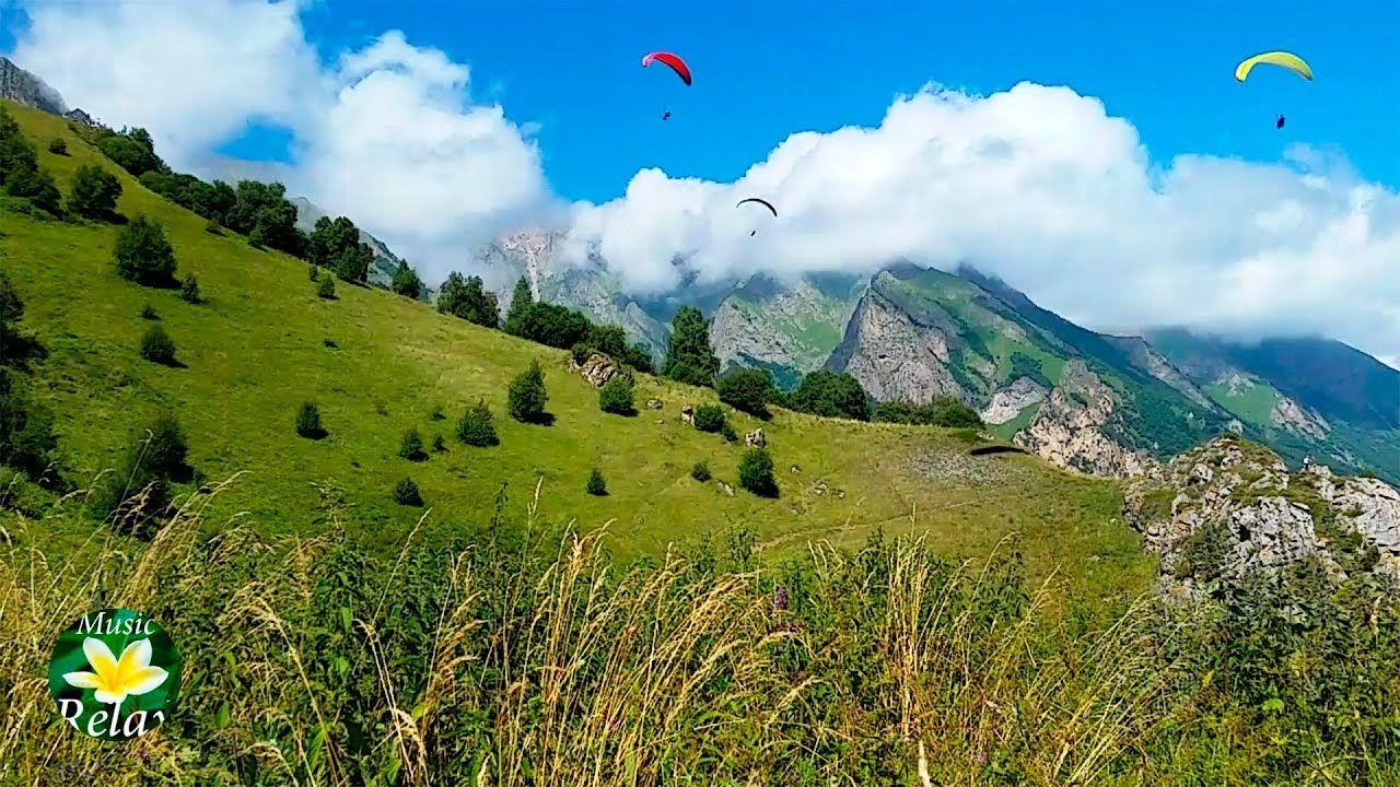 Звуки ветра, сверчки и пение птиц в горах | Природа