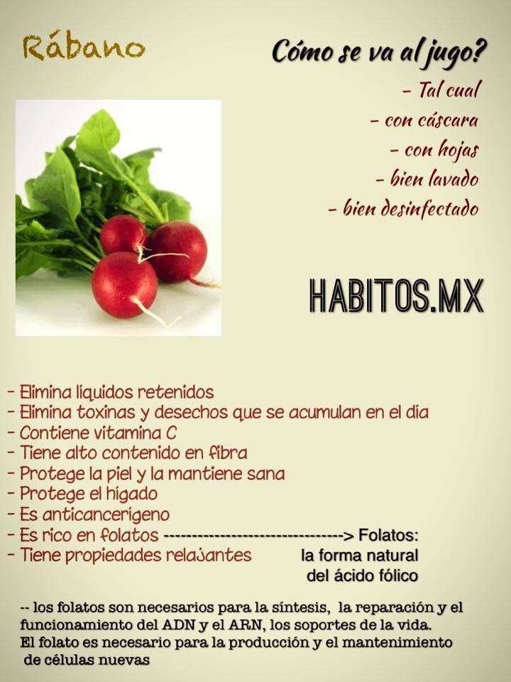 Los Beneficios Del Rábano Alimentos Saludables Beneficios De Alimentos Nutrición