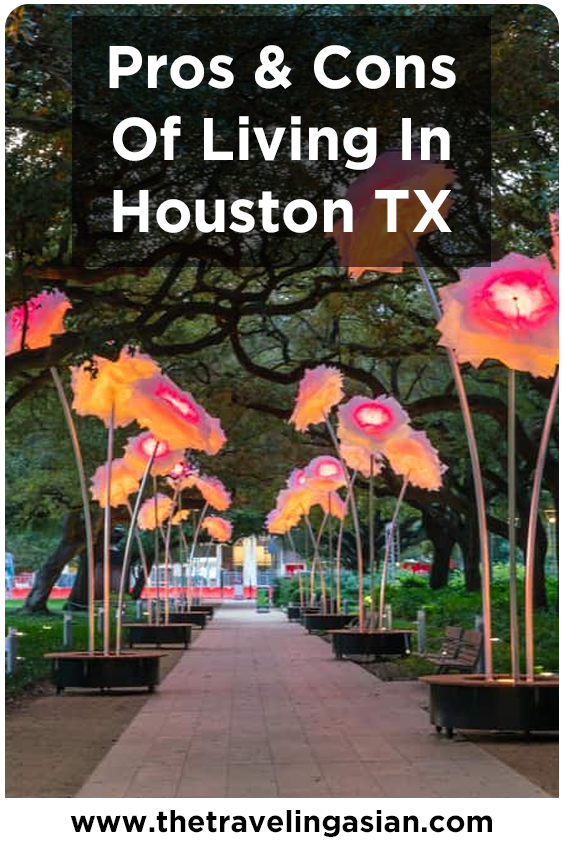 8d2be2a29fcc9e50e7916cb162117f78 - Newcomers Guide To Gardening In North Texas