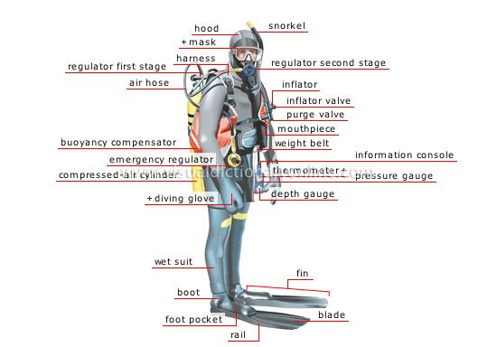 scuba gear diagram audi a2 wiring vivresaville an introduction to ice diving clearly wet equipment