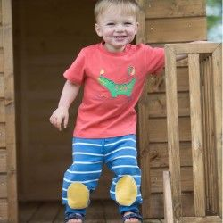 Kite Baby Boy Crocodile T Shirt (0-3 Years)