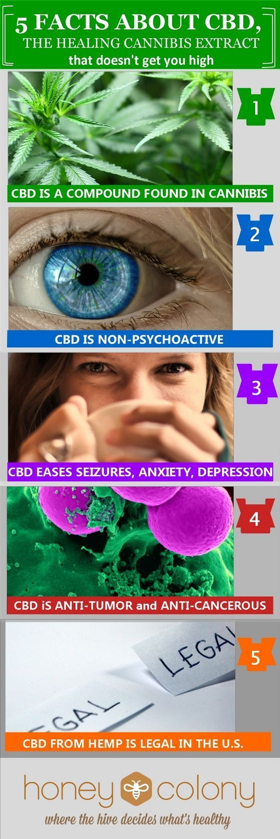 Healing Power of CBD OIL Cannabidiol, CBD, Benefits for Pain, Mental Illness & Anxiety and more… CBD OIL BENEFITS LIST - It Combats Tumor & Cancer Cells, Anxiety, Seizures, Pain Relief, Depression disorders, psychosis disorders, Inflammatory Disorders & http://www.easybodyfit.com/cbd-oil-benefits-list/