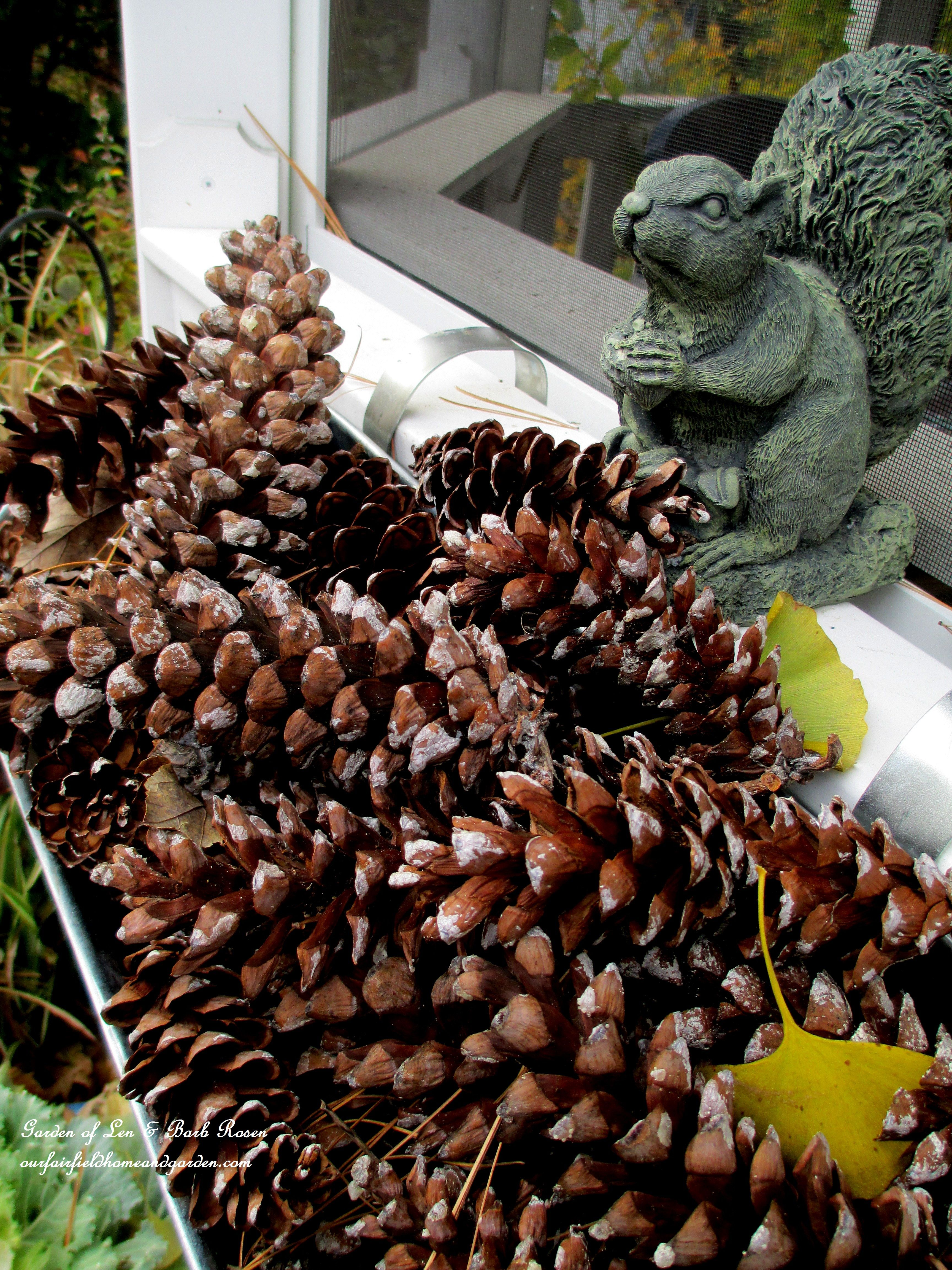 used pine cones to fill the gazebo window boxes for fall winter