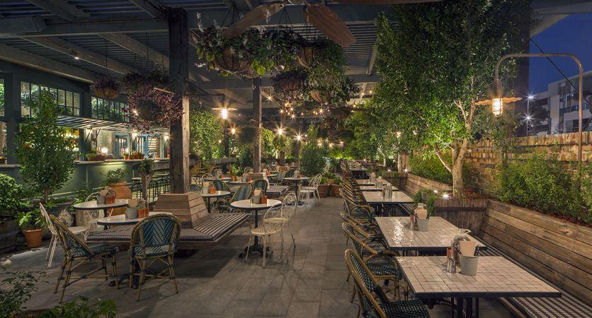Comedor General Tipo Terraza Diseño Del Restaurante