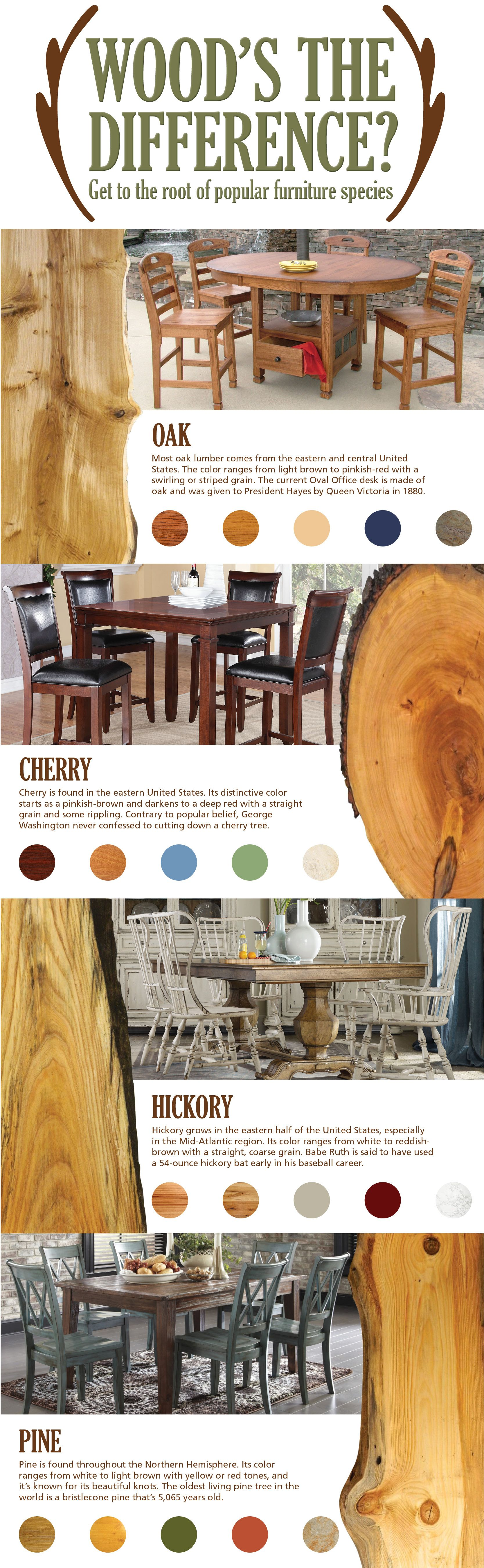 Infographic Know Your Wood Types Home Infographics Tips How