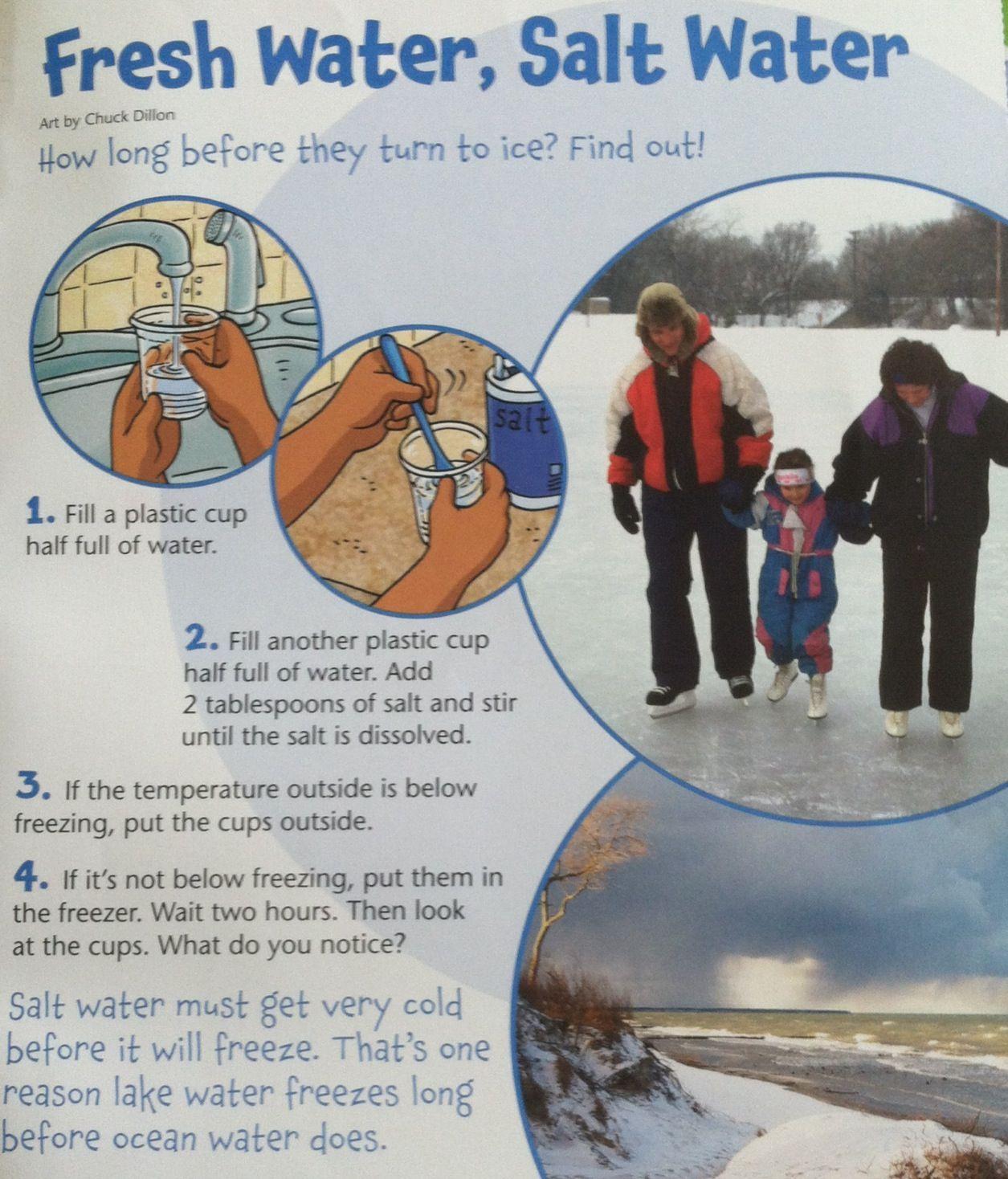 Fresh Water Salt Water Experiment High Five Ideas